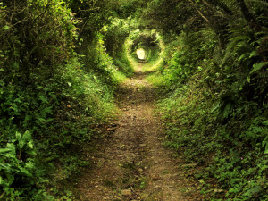 © Petarpaunchev | Dreamstime.com - Enchanted tunnel path in the forest