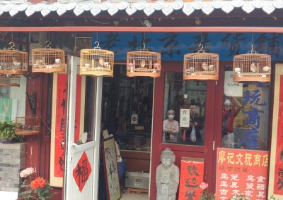 Lovely birds for sale in Hutong