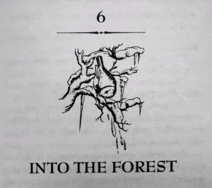 Chapter 6 Into the Forest