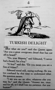 Chapter 4 Turkish Delight